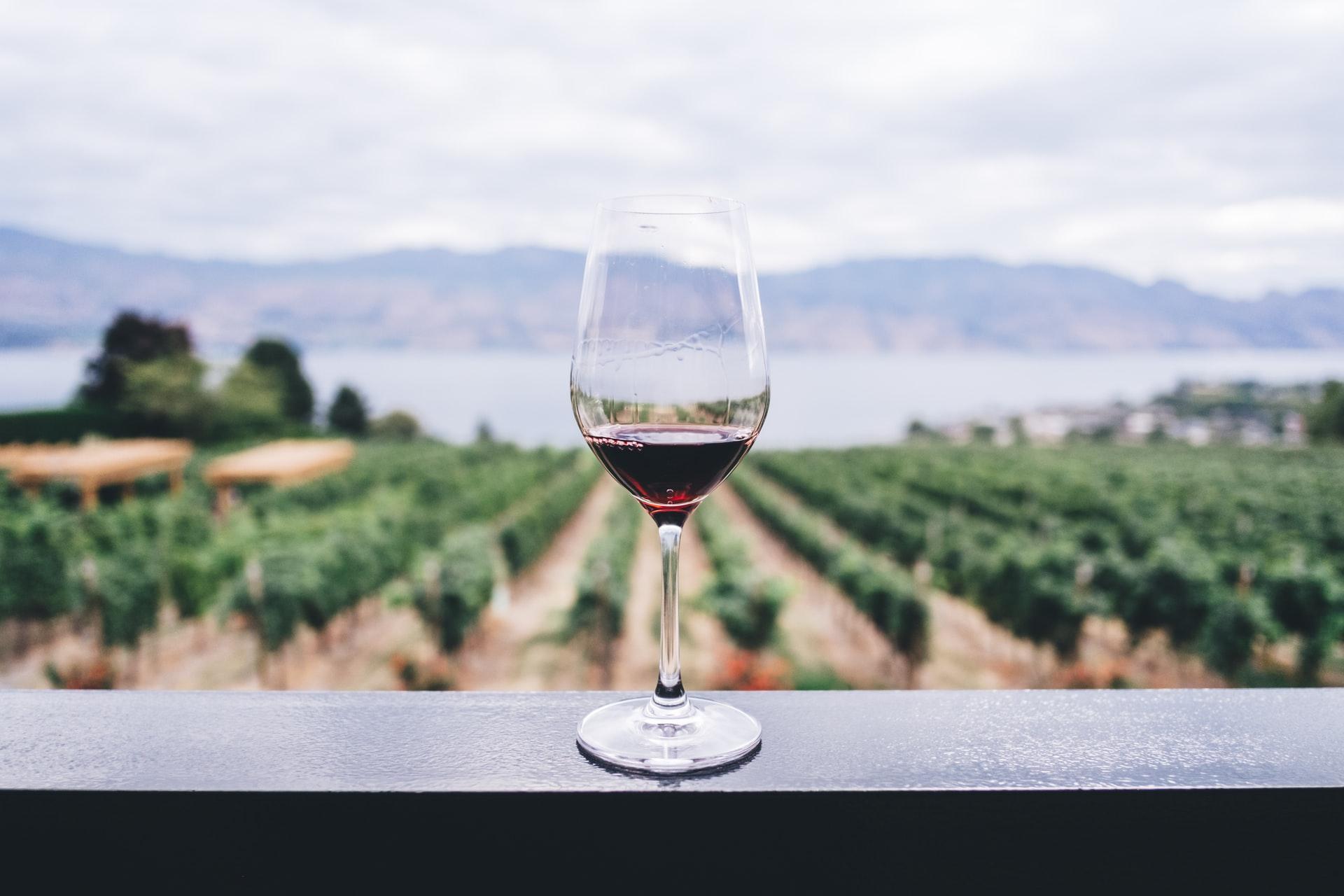 Find inspiration til forårets og sommerens vine